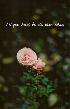 - Taylor Swift : All You Had To Do Was Stay