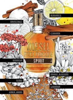 Diesel Fuel for Life Spirit Composition