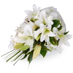Clara - Effortlessly elegant as well as being long lasting, the Clara is a sensational selection of alabaster white lilies, complemented by greenery.