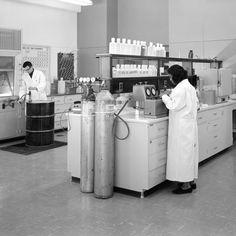 Um estudo alemão tentou entender por que as mulheres que começam a trabalhar com ciência abandonam suas pesquisas. Descobriu que a culpa é de fatores sociais