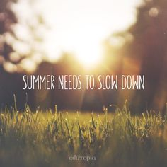 Back to school season is exciting, but we could all use a little extra summer in our lives.