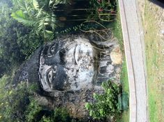 Este--Isabela, Puerto Rico. Turn at the Stone Lady's Face.