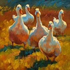 Must be Quackers by Cheri Christensen Oil ~ 24 x Great vibrant color in this oil painting of these ducks. Farm Paintings, Animal Paintings, Painting & Drawing, Watercolor Paintings, Duck Art, Farm Art, Pastel Art, Wildlife Art, Beautiful Paintings