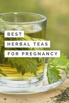 Discover how to befriend three herbs that will nourish you and support you through pregnancy, birth and postpartum! Best Herbal Tea, Doula, Revolution, Birth, Herbalism, Pregnancy, Herbs, Posts, Blog