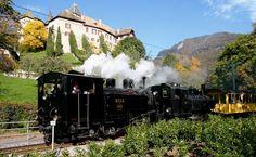 bfd-3-seg-105-chblonay BC / BFD HG 3/3 3 et SEG G 2x 2/2 105 -- Château de Blonay (MVR) -- 26.10.2003 Train Suisse, Trains, Photography, Train