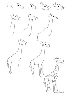 How to draw a giraffe, instructions in eleven steps for beginners, drawing . How to draw a giraffe, eleven-step instruction for beginners, drawing in pencil Gallery Ideas] Drawing Lessons, Art Lessons, Drawing For Kids, Art For Kids, Animal Drawings, Pencil Drawings, Tracing Pictures, Giraffe Drawing, How To Draw Giraffe