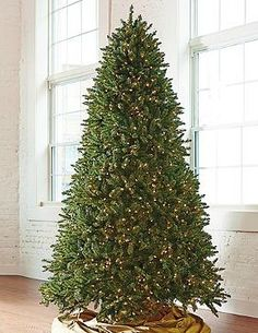 Enjoy a full, beautifully lit Christmas tree every year with the Grand Fir Artificial Christmas Tree with Wheeled Stand that is easily assembled and boasts a wheeled base for convenient moving.