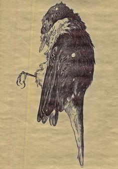 Dead Bird 6 by m. lewandowski #illustration #pen