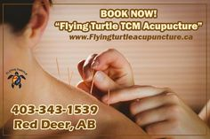FLYINGTURTLEACUPUNCTURE.COM 6828 50th Avenue, #3, Red Deer, AB T4N 4E3   Book Now: 403-343-1539