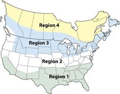 Best Planting Dates by Region