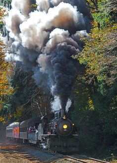 Photo Oregon Coast Scenic Railroad by Larry Andreasen