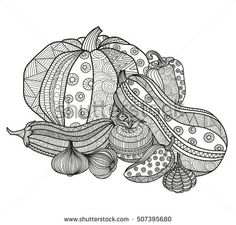 Vector illustration set of vegetables for coloring books for adults. Page book coloring. Boho zentangl crop doodle ornament pattern. Ornate hand-drawing. Pumpkin eggplant tomato onion garlic paprika.