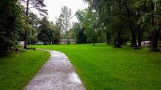 parque, camino, caminito, arboles, arbol, pasto, park, road, little road, trees, tree, grass