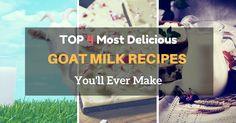 goat-milk-recipes