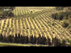▶ (1) Douces Frances - En provence et Alpes Côte d'Azur - YouTube