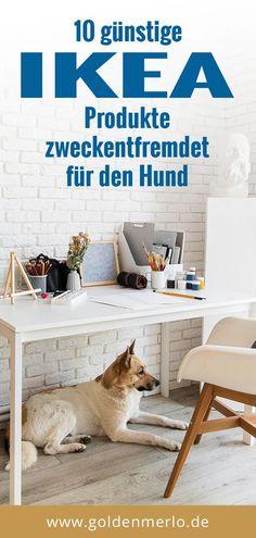 Ikea Dog, Household Chores, Dog Hacks, Simple Life Hacks, Vizsla, Labradoodle, Sheltie, Whippet, Little Dogs