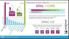 Rain - the best antioxidant, ORAC Lab Rain International, Lab, Good Things, Labs, Labradors