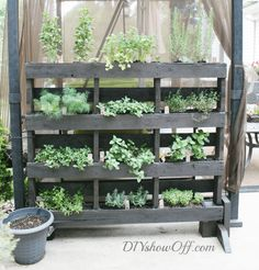 DIY Planters | Pallet Vertical Herb Garden