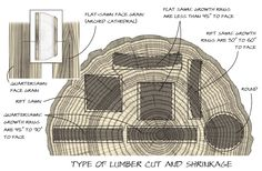 Type of Lumber Cut and Shrinkage