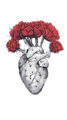 Shop for Noir Gallery Red Floral Botanical Heart Canvas Wall Art Print. Get free delivery On EVERYTHING* Overstock - Your Online Art Gallery Store! Heart Poster, Heart Canvas, Watercolor Heart, Tattoo Watercolor, Heart Illustration, Cactus Art, Cactus Plants, Indoor Cactus, Cactus Decor