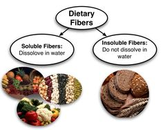 Fiber, along with adequate water intake, moves quickly and relatively easily through your digestive tract and helps it function properly.