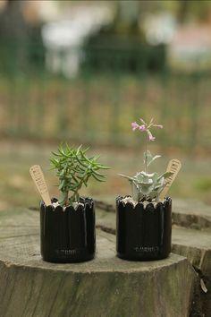 Moritas VIVARIUM Succulent + Ceramic Black Pot http://www.vivariumnaturaleza.com/pdto---moritas.html