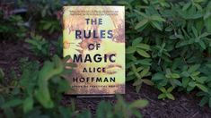 NPR News: In 1960s New York Witchy Women Learn 'The Rules Of Magic' | Visit http://www.omnipopmag.com/main For More!!! #Omnipop #Omnipopmag