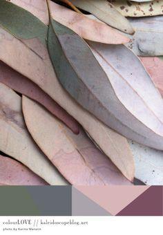 Colour Love // 46 - gum leaves, green, brown, grey, gray, pink, mauve, burgundy, olive, khaki,