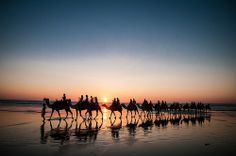 Ships of the Cable Beach - Each evening, at sunset, trains of camels take people sightseeing along this beautiful stretch of coastline in northern Western Australia. Photography by Pat Charles. Beautiful Places To Travel, Beautiful World, Amazing Places, Western Australia, Australia Travel, Australian Capital Territory, Spring Break Trips, Rest Of The World, Holiday Destinations