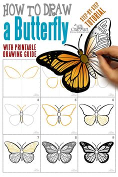 How to draw a butterfly step by step easy printable guide. Learn how to draw a monarch butterfly and some interesting facts about this beautiful insect. drawing step by step How to draw a butterfly step by step easy and fast - Craft-Mart Butterfly Facts, Butterfly Species, Monarch Butterfly, Butterfly Painting Easy, How To Draw Butterfly, Simple Butterfly, Drawing Sites, Drawing Guide, Step By Step Drawing