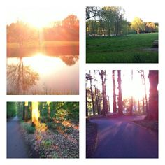 Went for a walk the other day. It was so beautiful outside =)