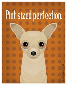 Chihuahua Funny Dogs Original Art Print  by DogsIncorporated, $29.00