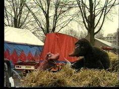 Koekeloere - 108. Dieren in het circus Circus Theme, Mardi Gras