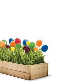 Wheatgrass and lollipop centerpiece for kids party