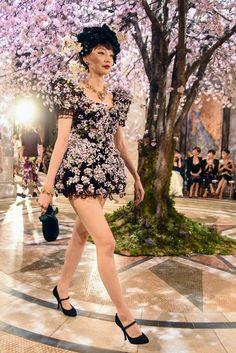 02c91827870de3 819 Best Dolce & Gabbana Alta Moda images in 2017 | High fashion ...