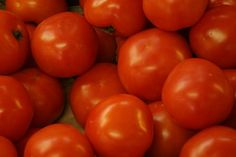Can Tomatoes or Freeze Tomatoes