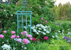 Aiken House & Gardens: In an English Country Garden
