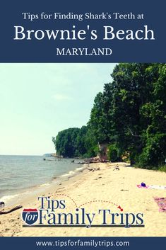 Tips for visiting Bayfront Park (Brownie's Beach) in Maryland. Includes what to expect, things to do, fossil hunting tips, safety and more. | tipsforfamilytrips.com #fossils #Maryland