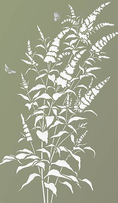 Beautiful wild flower stencil. 1 sheet large designer stencil The beautiful Buddleia Butterfly Bush Stencil is perfect for botanical wild flower stencilling projects. Ideal for interior decorating on walls and soft furnishings.Based on Henny's Buddleia drawings this stunning spray of buddleia flowers comes with two beautiful Red Admiral Stencil Motifs and astem extension and additional leaves. See size specifications below.