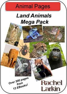 Animal Notebooking Pages - Written for the author's kids to use during the Apologia Land Animals study.  Could also be good to teach research.