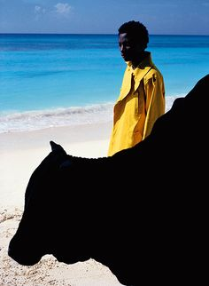 Artist : Vivianne Sassen Concept : Sassen combines ultra-bright colours with odd postures to bring a signature quality to her art photography