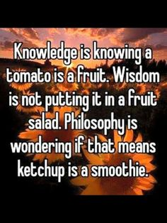 Common sense is ketchup is not a smoothie
