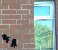 gloves stuck on a school's wall