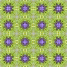 WFC13 fabric by bahrsteads on Spoonflower - custom fabric