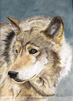Wolf Painting Pastel by JoanPriceArt on Etsy, $50.00