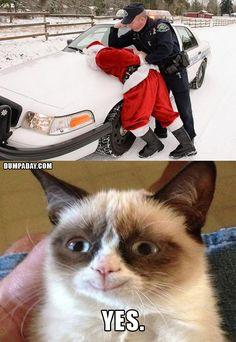 grumpy cat christmas, santa gets arrested, makes grumpy cat happy