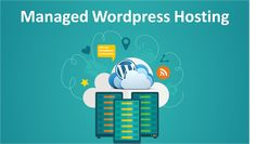 Wondering what is Managed Wordpress Hosting? Lets us have a look at Managed Wordpress Hosting, what are its benefits and when do you need it. Wordpress Template, Wordpress Theme, Drupal, Hosting Company, Seo Tips, Online Business, How To Plan, Concierge, Infographics