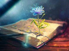 Könyvek és virágok