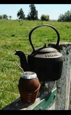 Love Mate, Yerba Mate Tea, Different Types Of Tea, Tea Benefits, Rio Grande Do Sul, Diet And Nutrition, Tea Pots, Traditional, Mendoza