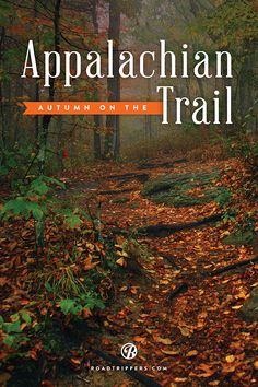 It's the perfect time of year to take in the incredible golds, reds, and burgundies of the unforgettable Appalachian trail.